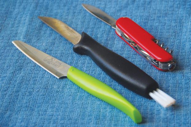 中间黑色的是蘑菇刀,尾端的刷子用来清理蘑菇上的昆虫和泥土。芬兰超市都可找到,3至20欧元不等。要不然,小刀或瑞士刀也行。