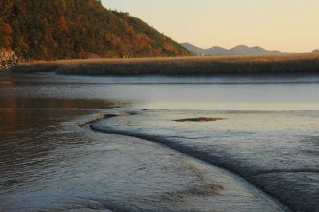 世界上五大湿地之一