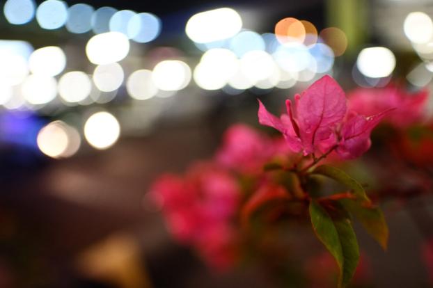 BIG__16mm (1)