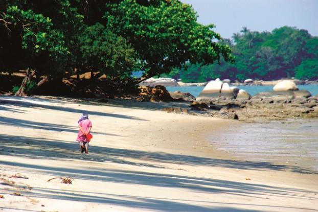 退潮的沙滩